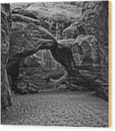 Arches National Park Black And White Wood Print