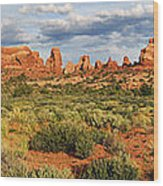 Arches National Park Panorama Wood Print