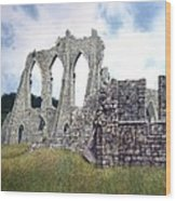 Arches Of Bayham Abbey Wood Print