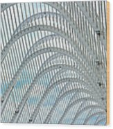 Arches Of Steel Wood Print