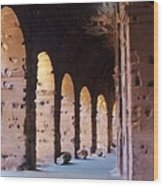 Arches Of The Roman Coliseum Wood Print by Jan Moore