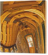 Architecture By Seuss Wood Print