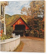 Architecture - Woodstock Vt - Entering Woodstock Wood Print by Mike Savad