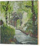 Archway In Central Park Wood Print