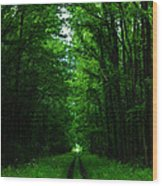Archway Of Light Wood Print