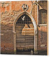 Archway With Bird In Venice Wood Print