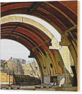 Arcosanti Wood Print
