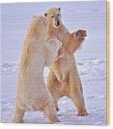 Arctic Dance Wood Print