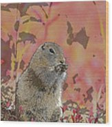 Arctic Ground Squirrel In Autumn Colors Abstract Wood Print