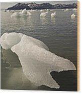 Arctic Ice Floe Wood Print