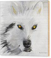 Arctic Wolf With Yellow Eyes Wood Print
