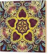 Arcturian Starseed Wood Print