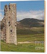 Ardvreck Castle Landscape Wood Print