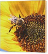 Are You Buzzing? Wood Print
