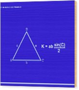 Area Of An Isosceles Triangle Dk Blue/wht Wood Print