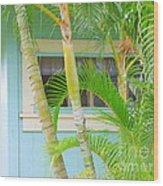 Areca Palms At The Window Wood Print