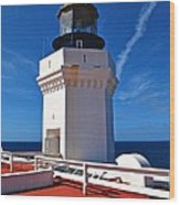 Arecibo Lighthouse 7 Wood Print