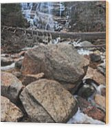 Arethusa Falls Wood Print by Catherine Reusch Daley