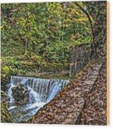 Areuse Gorge Wood Print