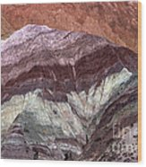 Argentine Rock Art Wood Print