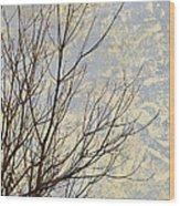 Aria Wood Print