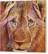 Arican Treasure Wood Print