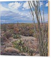 Arizona Afternoon Wood Print