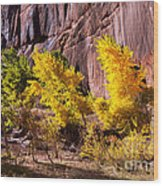 Arizona Autumn Colors Wood Print