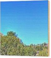Arizona Bell Rock Wood Print