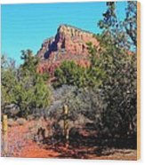 Arizona Bell Rock Valley N3 Wood Print