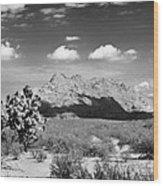 Arizona Desert #1 Wood Print