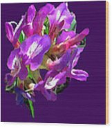 Arizona Desert Flowers Wood Print