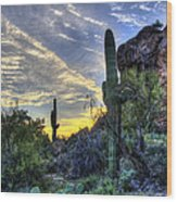 Arizona Desert  Wood Print