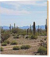 Arizona Desert Ride Wood Print
