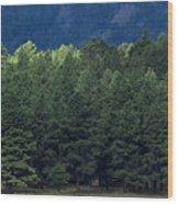 Arizona Forest Wood Print