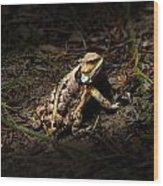 Arizona Horned Lizard Wood Print
