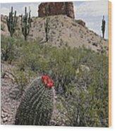 Arizona Icons Wood Print