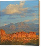 Arizona Wood Print