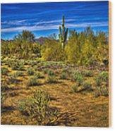 Arizona Landscape Iv Wood Print