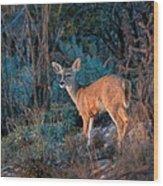 Arizona Deer Sunset Wood Print