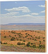 Arizona Near Canyon De Chelly Wood Print by Christine Till