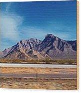 Arizona - On The Fly Wood Print