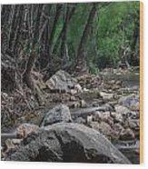 Arizona Riparian Flows Wood Print