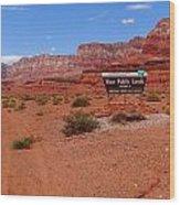 Arizona Road Trip Wood Print