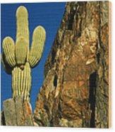 Arizona Sagauro Cactus Wood Print