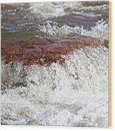 Arizona Water Wood Print