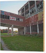 Ark At The Packard Plant Wood Print