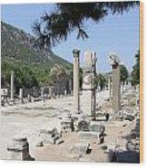 Arkadiane - Harbor Street Ephesus Wood Print