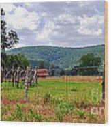 Arkansas Farmland Wood Print