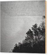 Arkansas Trees Wood Print